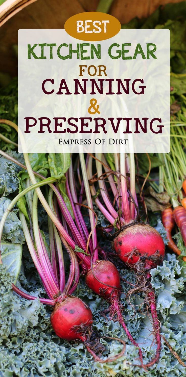 Tomatoes! Beets! Carrots! Zucchini! Apples! Peaches! Cucumbers! There are so many options for canning and preserving food. Peelers, pressure canners, dehydrators, mason jars, and food mills all make the job easier. Get fresh fruits and veggies and save the best for the months to come.