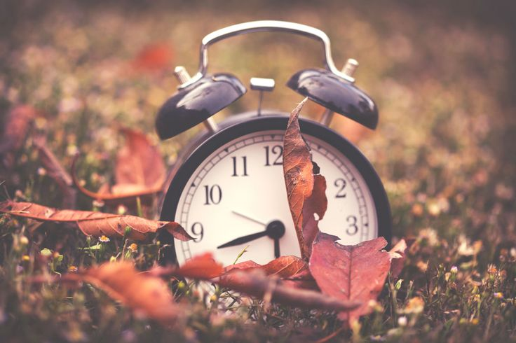 6 Weird Facts You Didn't Know About Fall Daylight Saving Time - WomansDay.com