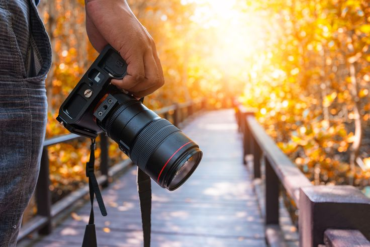 Looking for the best DSLR under 500? These DSLR cameras are some of the best quality and reasonably priced on the market. Learn more about these cameras...