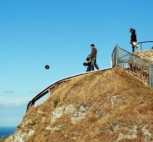 Two men were ordered by police to pick up all the records they frisbeed off Te Mata Peak this week.