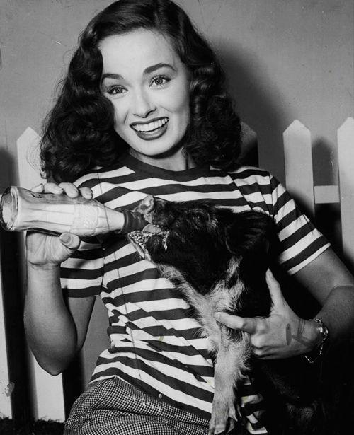 1116 best images about vintage pet pictures on pinterest