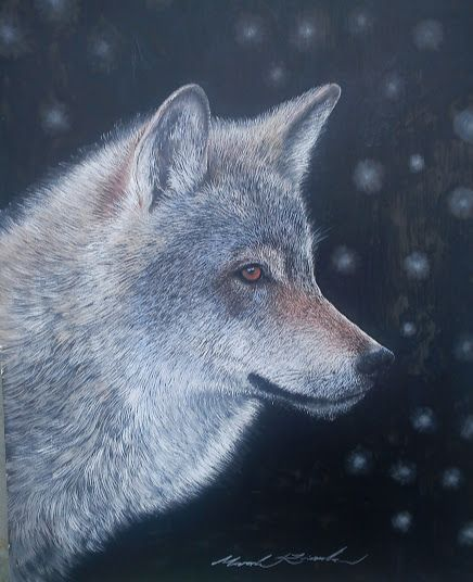 Vlk-portret olejomalba,sololitova doska
