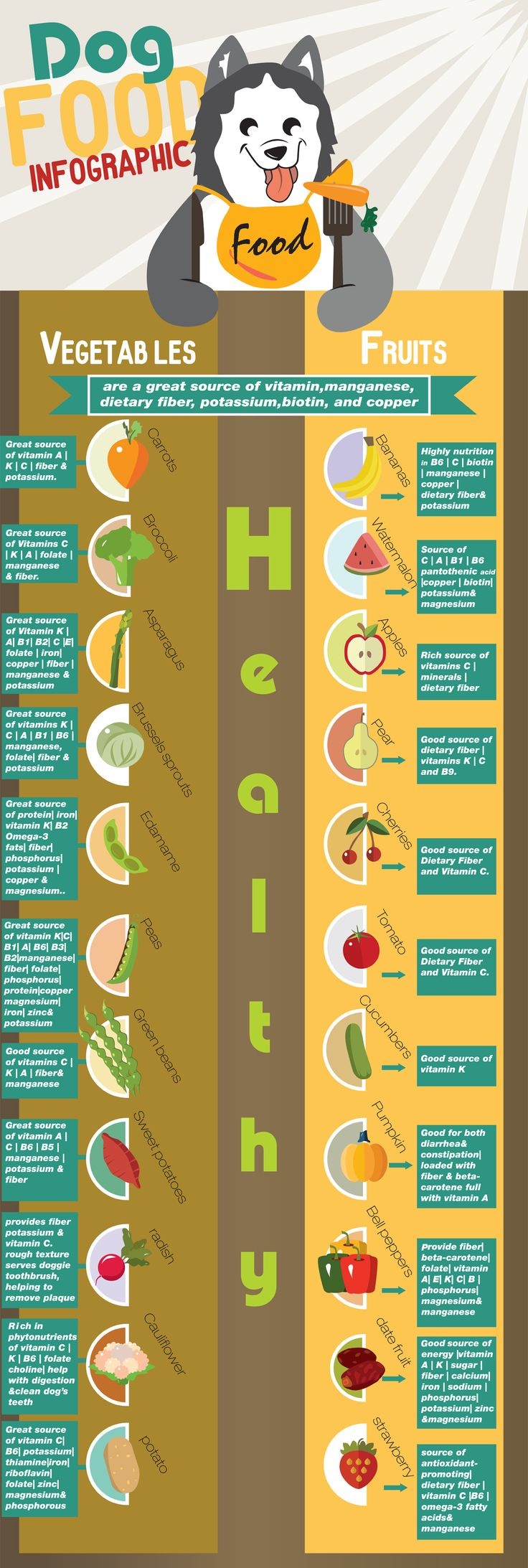 Dog food Infographic, Most people don't know but dogs are omnivores and not carnivores. I'm a huge dog lover so I took the time and made this extremely detailed and extend Infographic on the topic that shows which fruit and vegetable is good for your dog and  which are toxic. Hopefully this will help dog owners around the world every time they open their freeze and think about sharing a veggie as a treat with there furry friend. The rest of the infographic contain food who are toxic to dogs