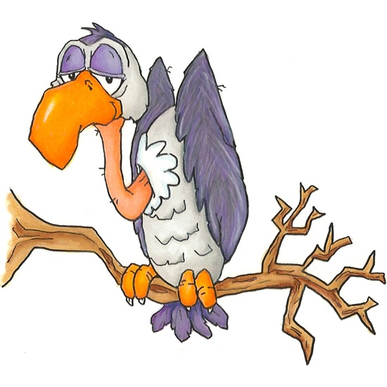 Buzzard I Just Had To Add Him My Boardlol Birds Shape Cartoon