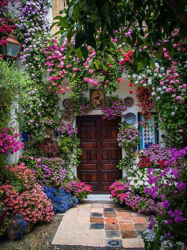 25 best images about balcony flowers on pinterest small for Balcony flower garden ideas