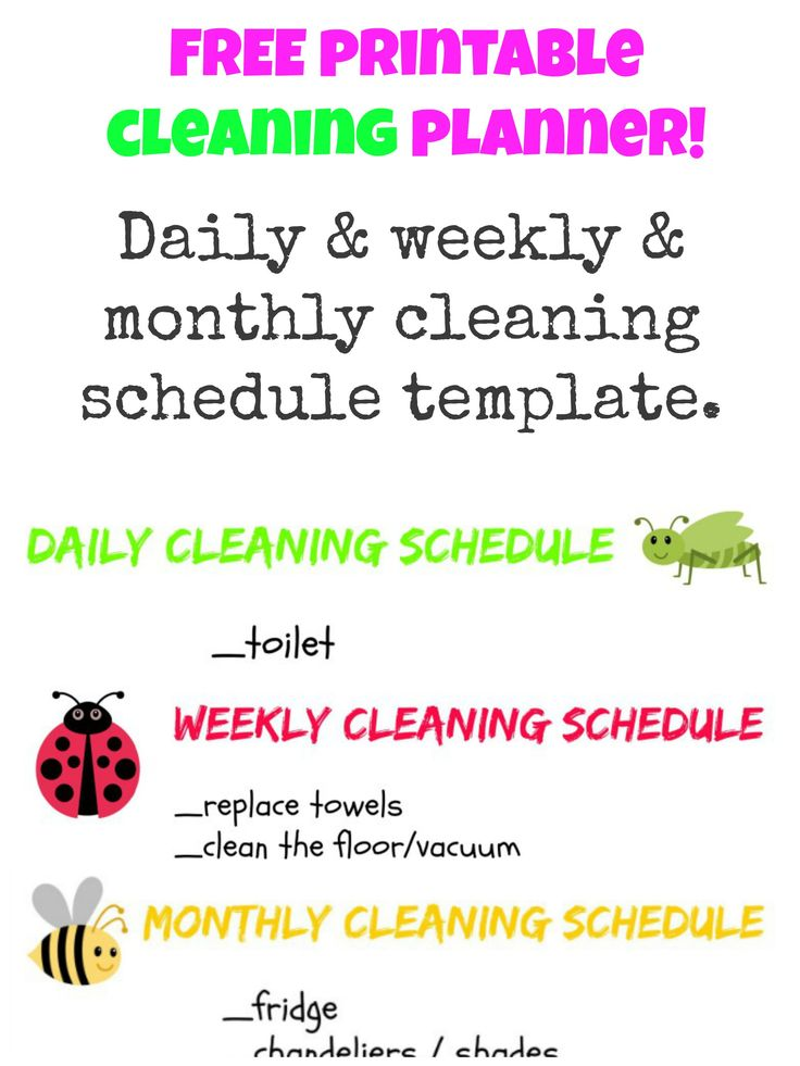 Best 25+ Monthly schedule template ideas on Pinterest Cleaning - birthday itinerary template