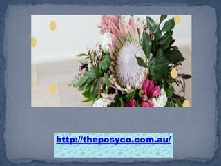 The Posy Co provides best flowers delivery in the area of Mooloolaba, SunshineCoast, Caloundra and Maroochydore at just $30. We would like to hear from you, Email your feedback and comments to hello@theposyco.com.au.