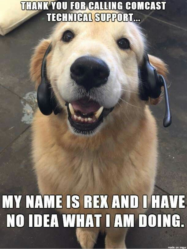 Thank You For Calling Comcast Technical Support My Name Is Rex And I Have No Idea What I M Doing Funny Dog Jokes Dog Jokes Cat Jokes