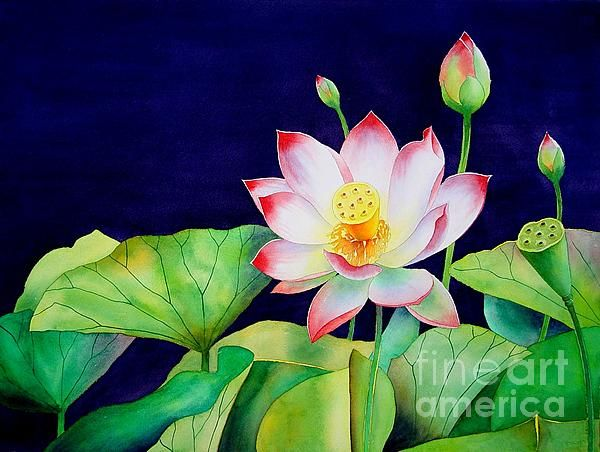 Sacred Lotus by Robert Hooper - Sacred Lotus Painting - Sacred Lotus Fine Art Prints and Posters for Sale
