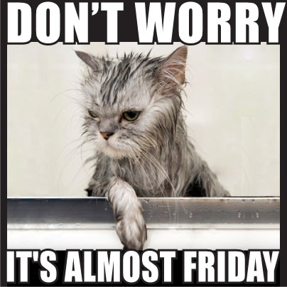 Don't worry, it's almost #Friday.