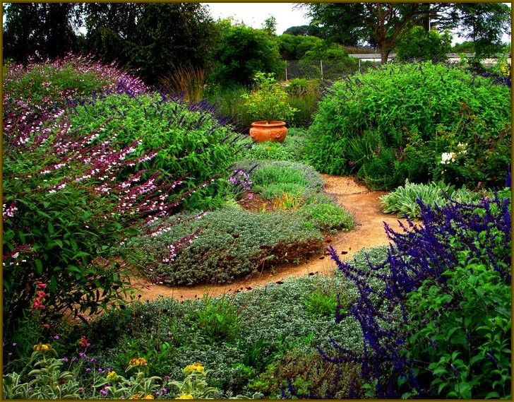 28 Best Images About Water Wise Gardening On Pinterest