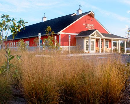 A tale of two #veterinary hospitals: Equine and small animal blend together in this big barn - Veterinary Hospital Design - dvm360