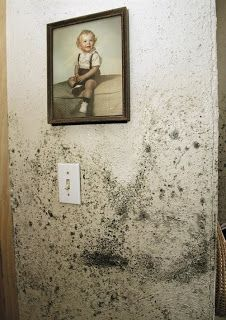 http://www.removeallstains.com/2013/07/how-to-remove-mold-stains-from-walls.html