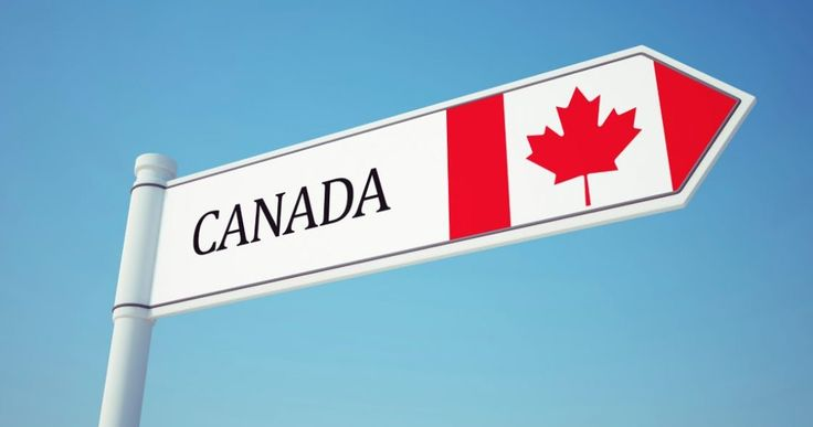 Estou morando no Canadá há quase um mês. Minha esposa foi aprovada em uma seleção para fazer seu doutorado na cidade de Calgary, a terceira...