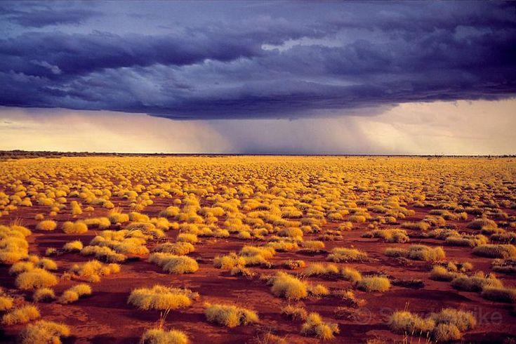 gibson desert  photo  steve strike  outback photographics nt        bloggerme com au  states