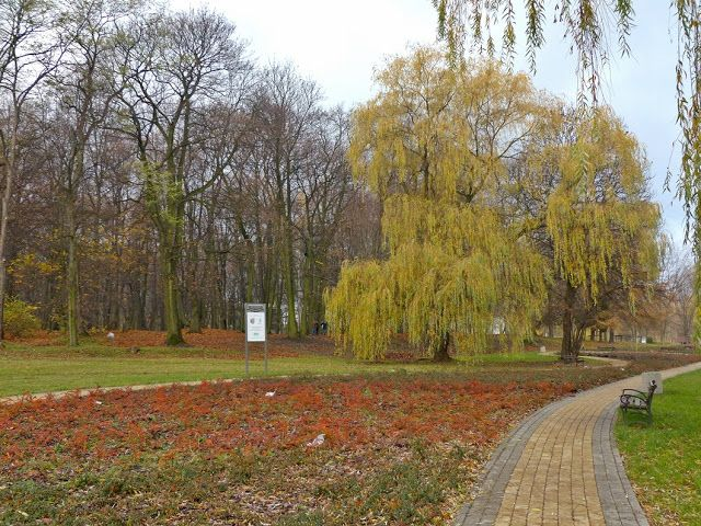 szlaki i bezdroża: Miechowice - Park Ludowy
