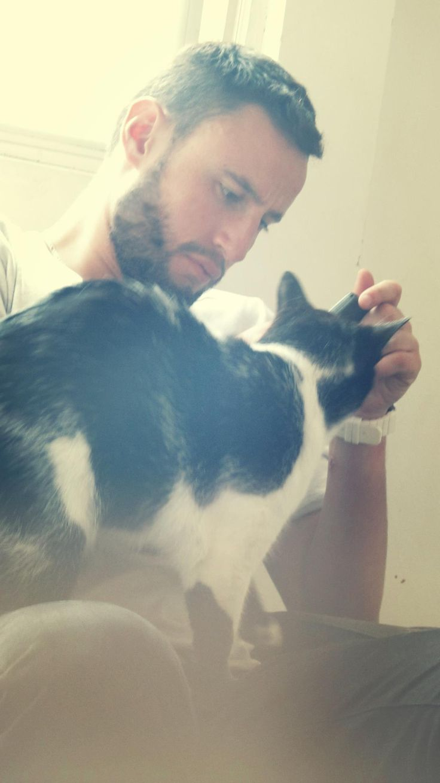 Cat friend beard