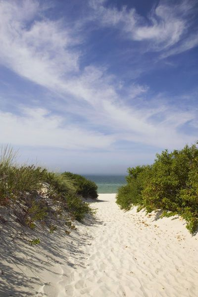 Lamberts Cove Beach, North Tisbury, Marthas Vineyard, Massachusetts, USA