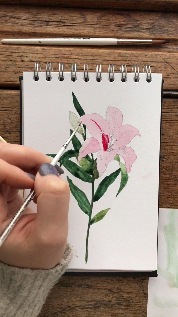 Watercolour Stargazer Lily Painting Hyperlapse