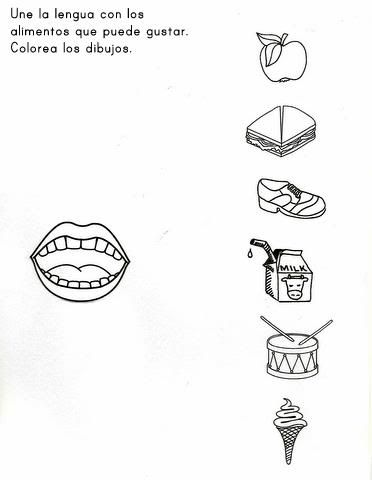 5 smyslů - chuť - přiřaď