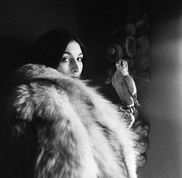 Anjelica with Falcon