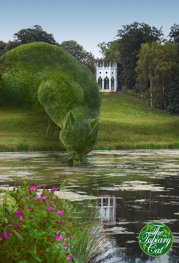 Topiary cat drinking at lake. From The Topiary Cat series by artist Richard Saunders. (These are photographic images, not real topiaries!)