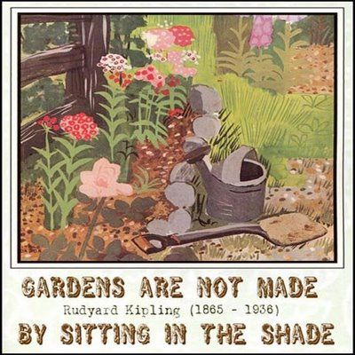 24 Best Gardening Quotes Images On Pinterest Gardening