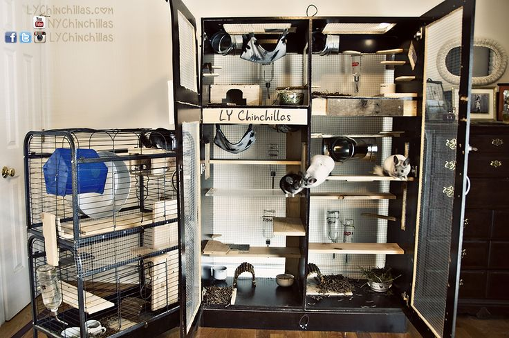 This week's post will be all about how to build your own custom chinchilla cage! Since last week's post, I've had many inquiries asking how I built my own cage and the step-by-step process involved…