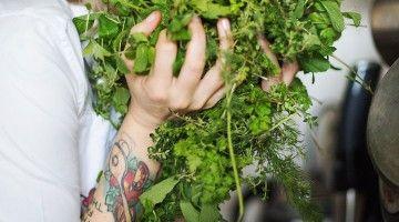 Breath in...frische Gewürze und Kräuter sind gesund und geben dem Essen den richtigen Taste