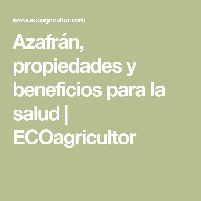 Azafrán, propiedades y beneficios para la salud | ECOagricultor