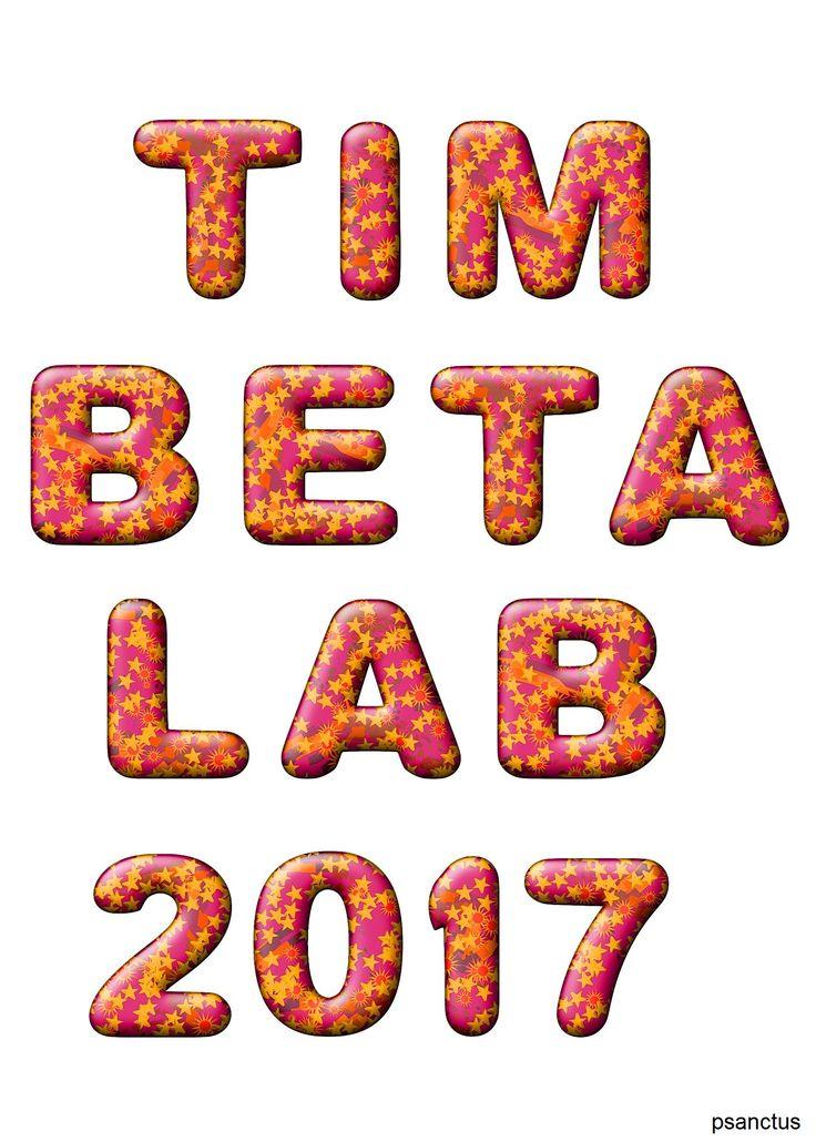 #TIMBETA LAB 2017