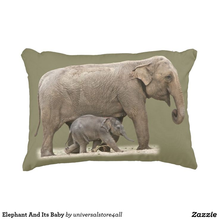 Elephant And Its Baby Decorative Pillow