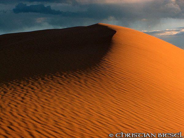 Great Dune ,Coral Pink Sand Dunes State Park , Utah