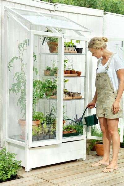 Oh, this miniature greenhouse is darling. And beautiful. And so awesome. I need this for my future garden.