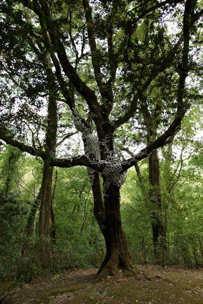 Fattoria di Celle - Loris Cecchini - The Hand, the Creatures, the Singing Garden - 2012