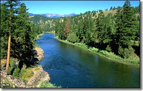 Missoula, Montana (A River Runs Through It): Fish, Clarks Forks, Absolutely Beautiful, Montana Beautiful, Summer, Montana Absolutely, Forks Rivers, Roads Trips, Missoula