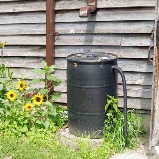 6 Methods for Harvesting Rainwater