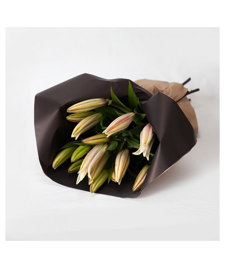 Same Again Wrap - Subscription Wraps - Oriental Lily (in bud)