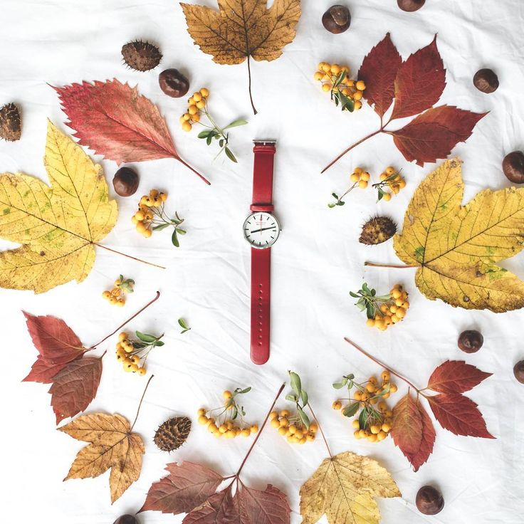 Jesień to najpiękniejszy czas w roku. #mondaine  #mondainewatch #autumn #simple #red #lovewatch #watches #butikiswiss