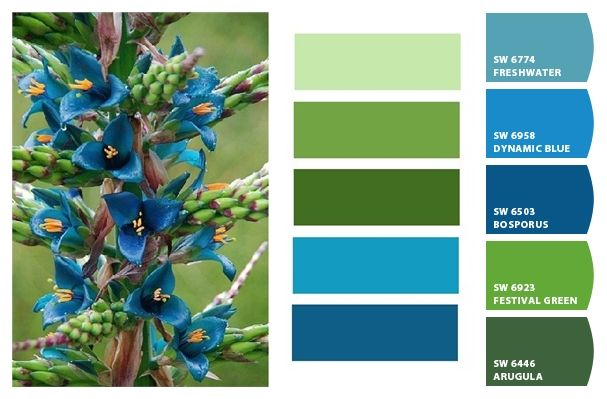 Shades of Green and Blue