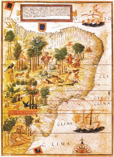 """""""Terra Brasilis"""" by portuguese astro and cartographer Lopo Homem-Reinéis, is a map of Brazil as it was in 1519, a few years after the beggining of Portuguese colonization. This map is currently in the French National Library."""
