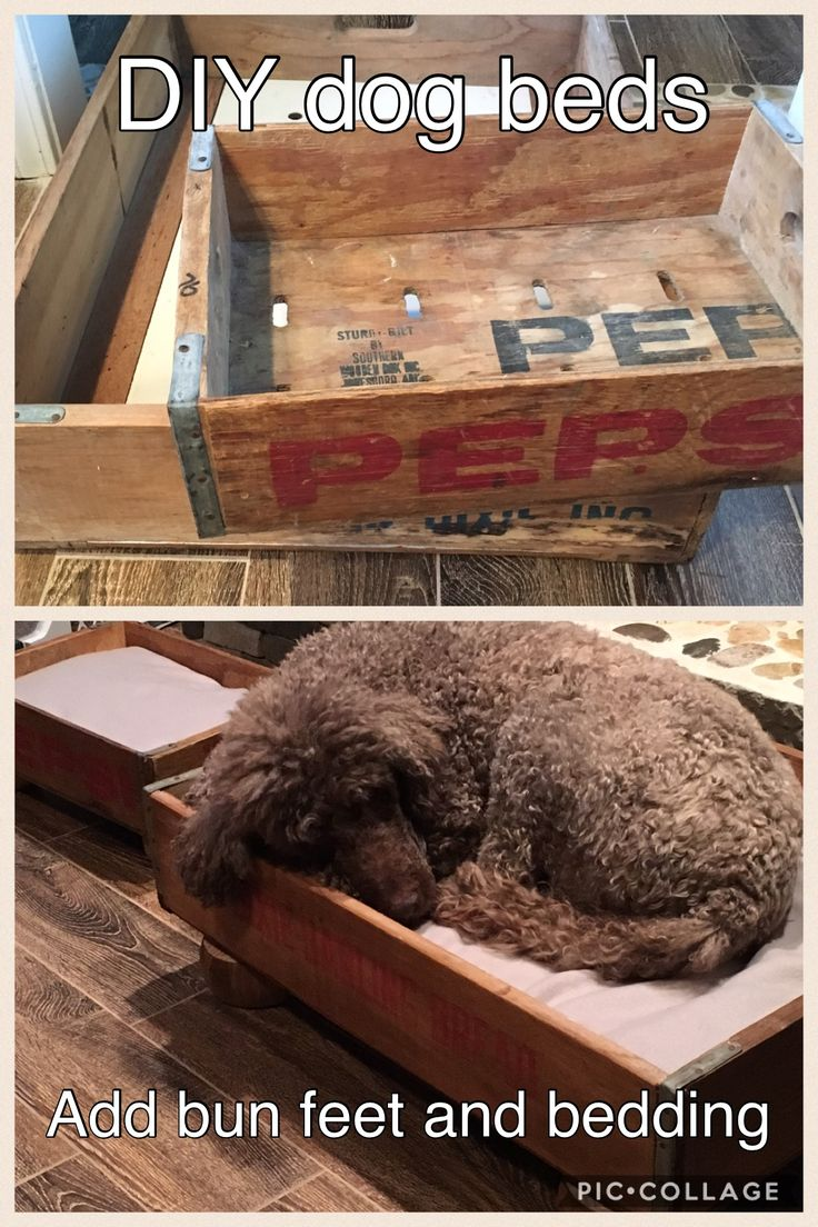 Manly Dog Beds