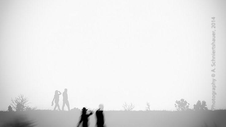 walking silhouettes II