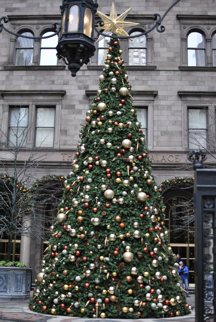 There is nothing quite like Christmas in New York.  This tree sit at the entrance to the Helmsley Palace Hotel in mid-town.