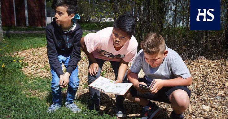 Kasviot palasivat opetussuunnitelmaan. Testaa HS:n visassa, miten tunnet kasveja.