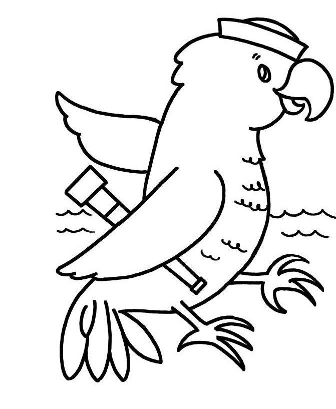 28 best Parrots images on Pinterest  Parrots Coloring and Kids