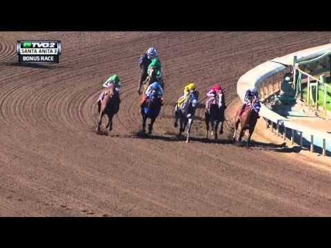 Ziconic (Son of Zenyatta) Debuts, Runs Third at Santa Anita - Horse Racing News videos