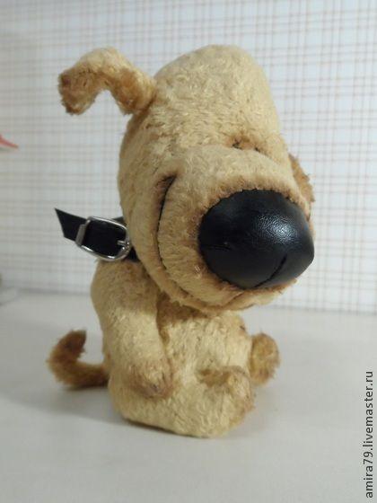 Ко мне, дружище, идем гулять! - бежевый,собака,собачка,щенок,тедди,собака тедди