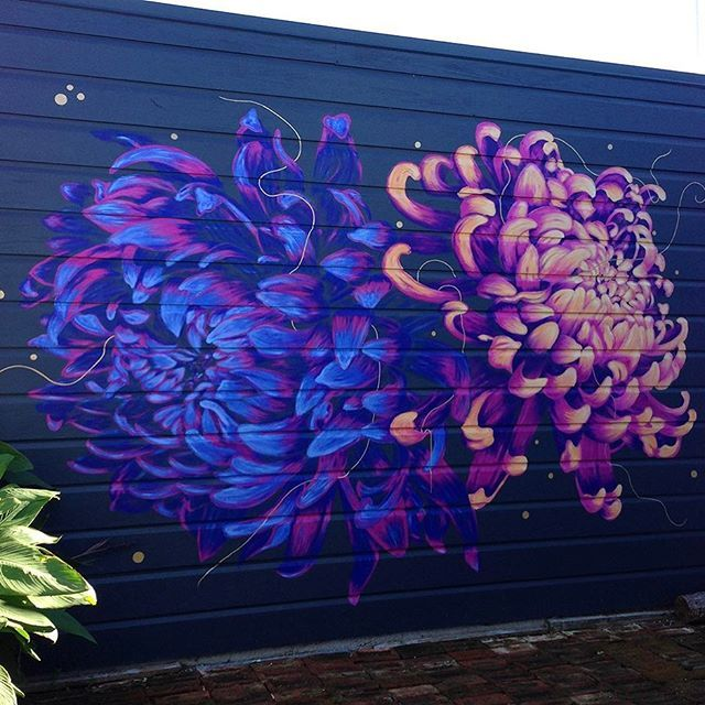 Chrysanthemums Sunset. There's a hint of gold to sparkle in the sunshine. Thanks Hayleigh, Nick and Wallis! xx #chrysanthemum #mural #napier #nzartist #freehand #drybrushing #cool #warm #flowers #nature #reseneremixed