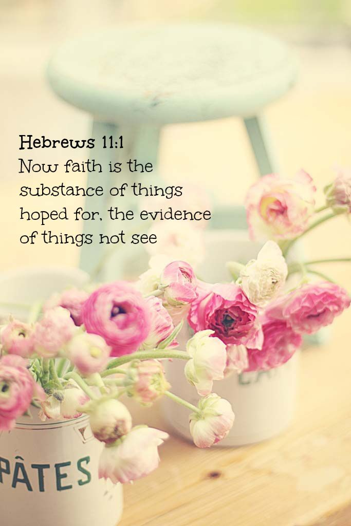 Hebrews 11:1 ~ Now faith is the substance of things hoped for, the evidence of things not see